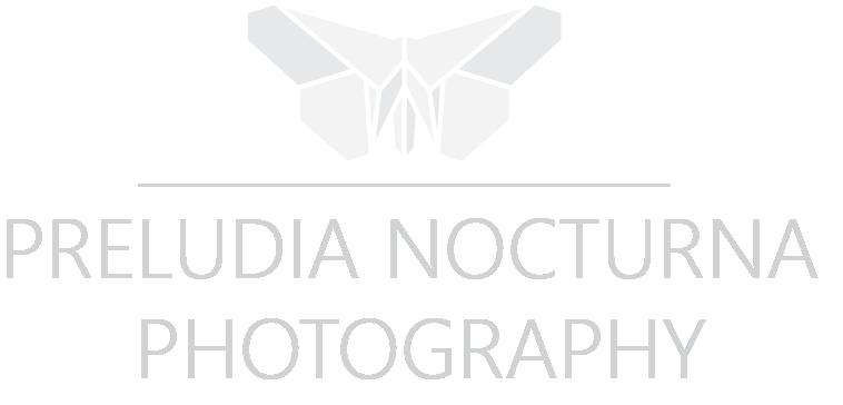 Svatebni fotograf Usti nad Labem, Praha, Brno – Svatebni fotografie | Preludia & Nocturna