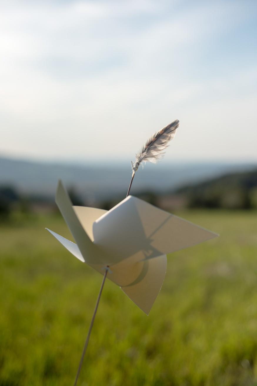 pavlina-richard-svatebni-foto 0025